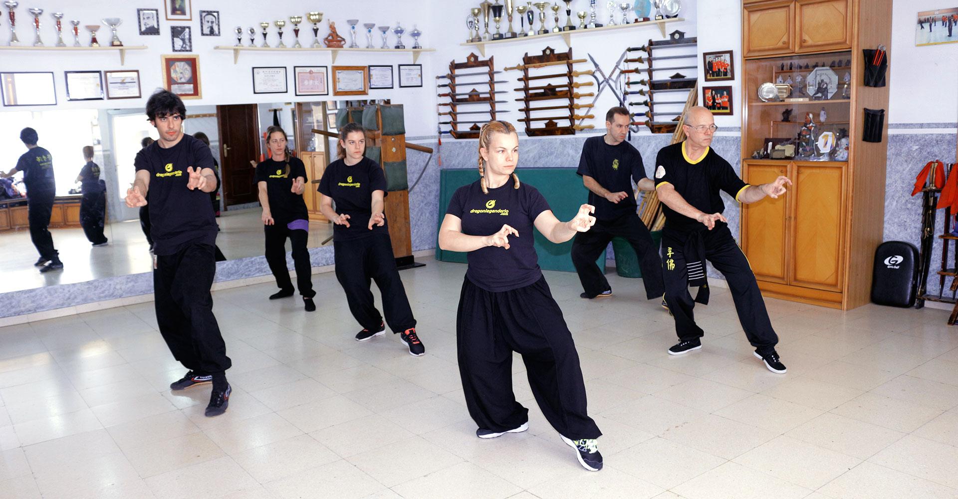 Choy Lee Fut Kung Fu style