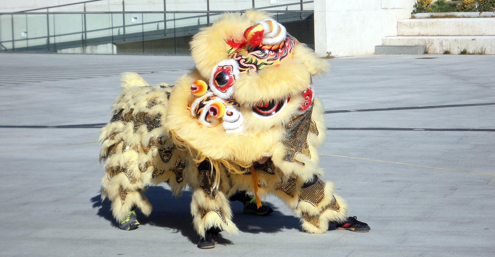 Danza del León - El león se despierta